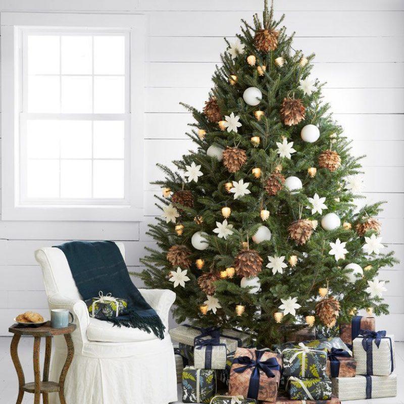 árbol natural navidad-adopta